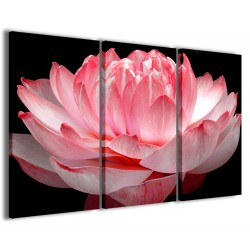 Lotus Flower 120x90