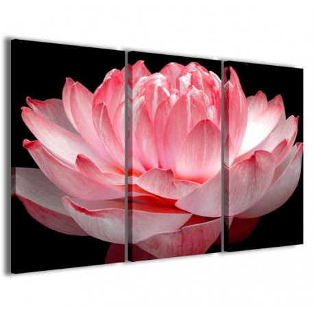 Lotus Flower 120x90 - 1
