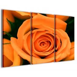 Orange Rose Flower 120x90