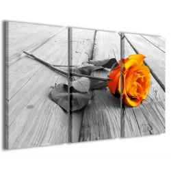 Orange Rose 120x90