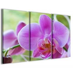 Orchidea 120x90