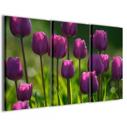 Pink Tulips 120x90