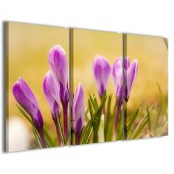 Primary Flower 120x90