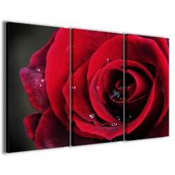 Red Rose II 120x90