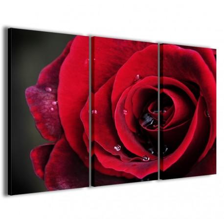 Red Rose II 120x90 - 1