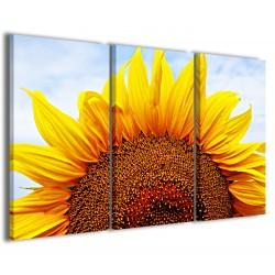 Sunflower VII 120x90