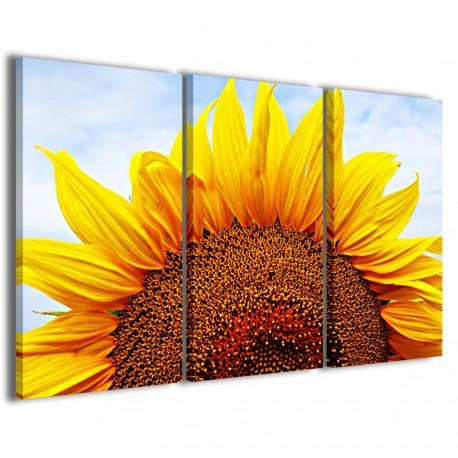 Sunflower VII 120x90 - 1