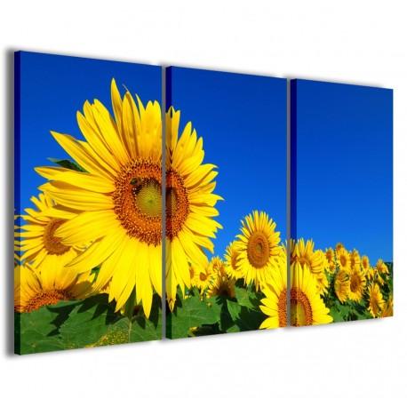 Sunflower 120x90 - 1