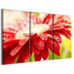 Superb Flower II 120x90