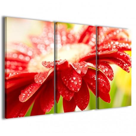 Superb Flower II 120x90 - 1