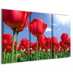 Tulipani 120x90
