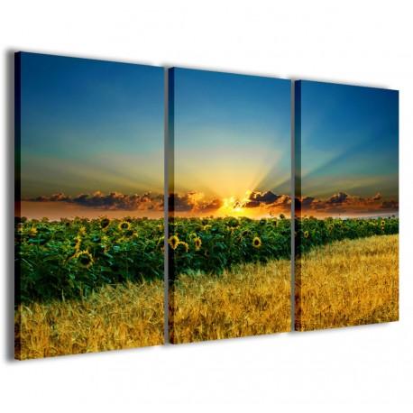 Beatiful Sunflower II 120x90 - 1