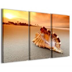 Conch on Sea 120x90