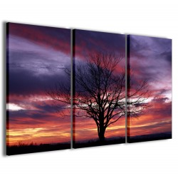 Fantastic Tree Whit Sunset 120x90