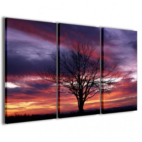 Fantastic Tree Whit Sunset 120x90 - 1