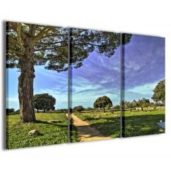 Natur Color 120x90