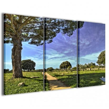 Natur Color 120x90 - 1