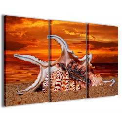 Sea Shell 120x90