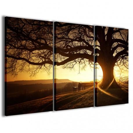 Soft Tree 120x90 - 1