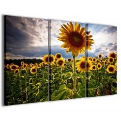Sunflowers V 120x90