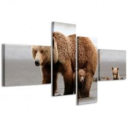 Bear 160x70