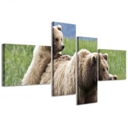 Bear II 160x70