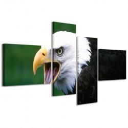Eagle I 160x70