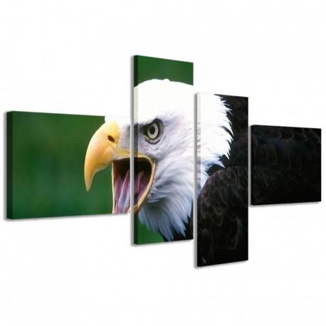 Eagle I 160x70 - 1
