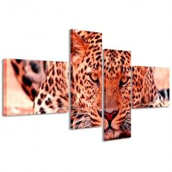 Leopard 160x70