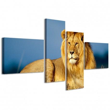 Lion I 160x70 - 1