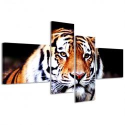 Tigre I 160x70