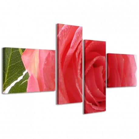Beatiful Rose II 160x70 - 1