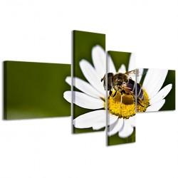 Insect Macro II 160x70 - 1