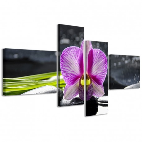 Orchidea Reflected II 160x70 - 1