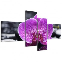 Orchidea Reflected III 160x70