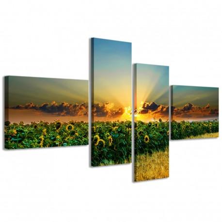 Beatiful Sunflowers II 160x70 - 1
