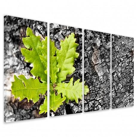 Autumn Particular 160x90 - 1