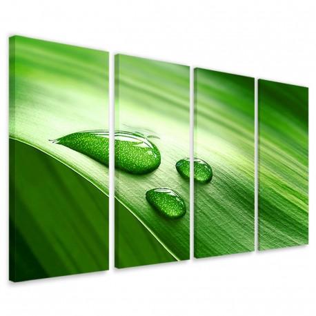 Dewdrops 160x90 - 1