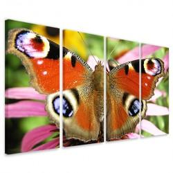 Butterfly II 160x90