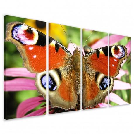 Butterfly II 160x90 - 1