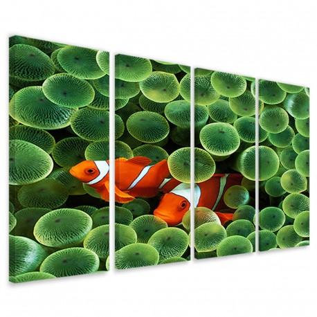 Clownfish Anemone 160x90 - 1