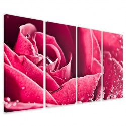 Beatiful Rose 160x90