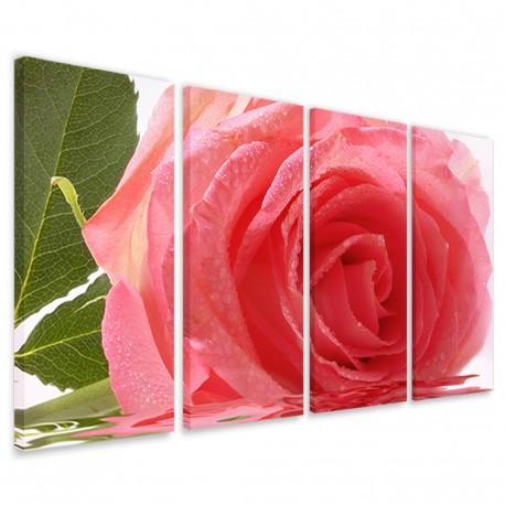 Beatiful Rose II 160x90 - 1