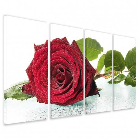 Blown Rose 160x90 - 1