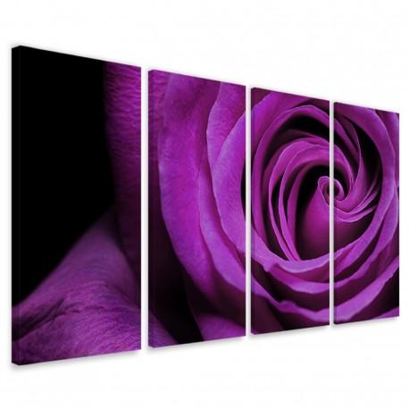 Blu Rose 160x90 - 1