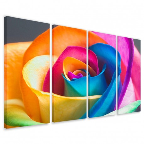 Color Rose 160x90 - 1