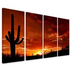 Cactus at Sunset 160x90