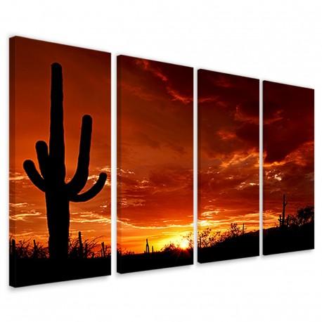 Cactus at Sunset 160x90 - 1