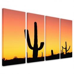 Cactus 160x90