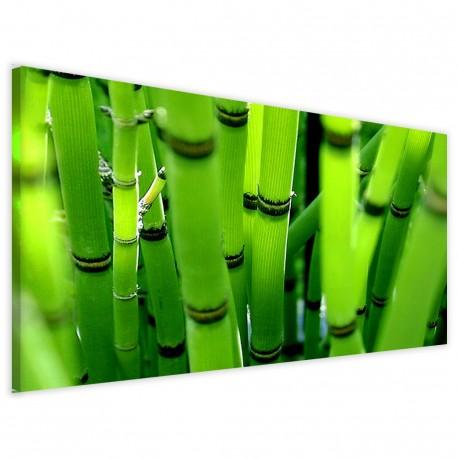 Panoramica Boous 40x90 - 1